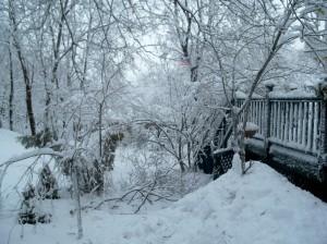 snowstormdamagebydeckfeb2009