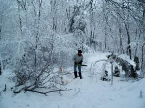 snowstormdamagechainsawfeb2009