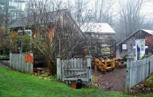 steeplebushherbshedandoutdoorplantareanov2008