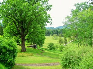 Naumkeag - view of lawns