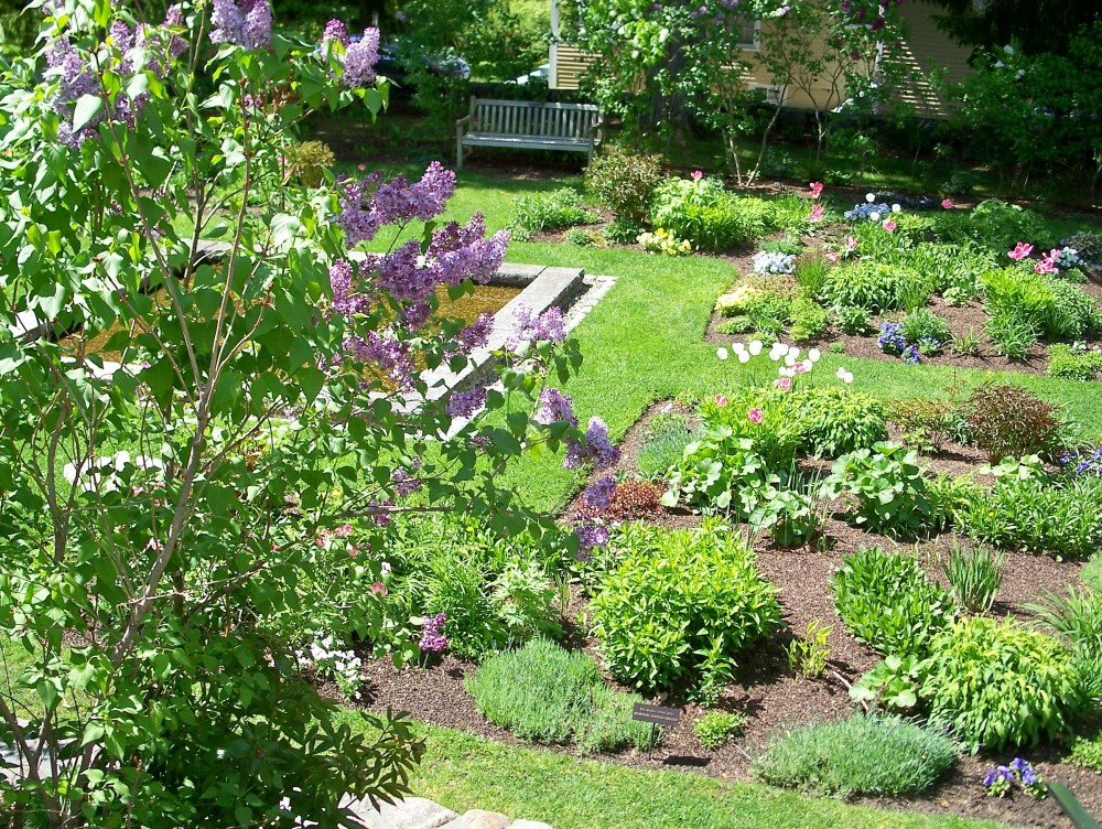 overview of garden, mid-May 2010