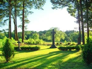 Stockbridge Cemetery - view to golf course