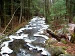 Great Brook, looking downstream