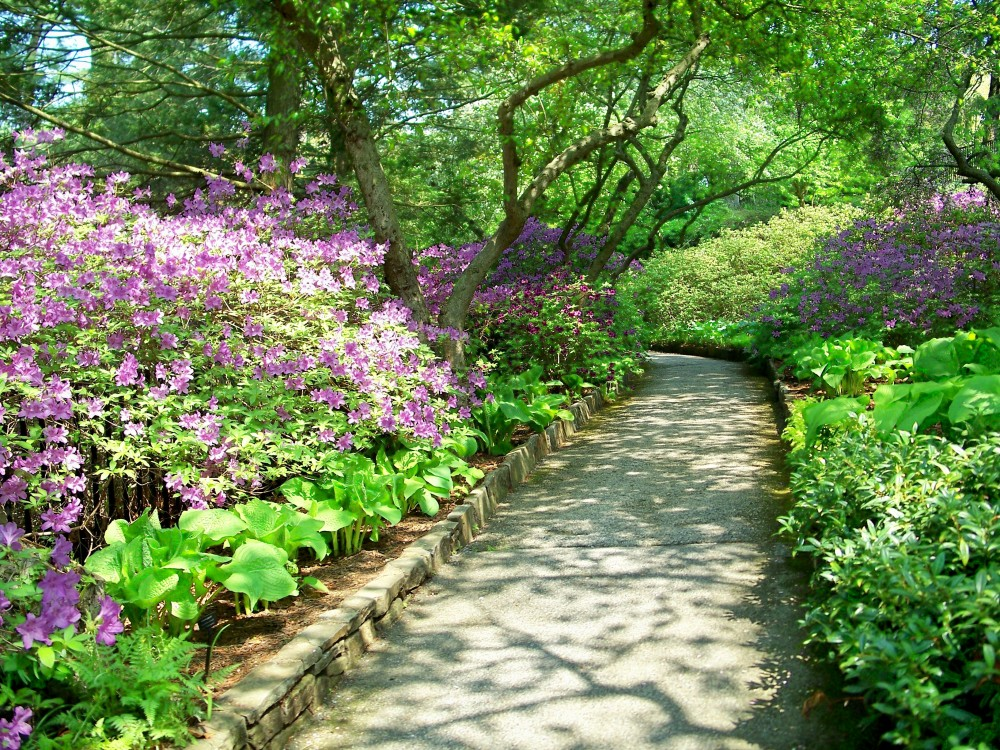 shaded pathway, Longwood Gardens, 2 May 2011