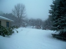 Front yard and walkway with snow - 21 March 2011