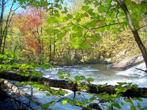 Sunapee River Trail, Oct 2011