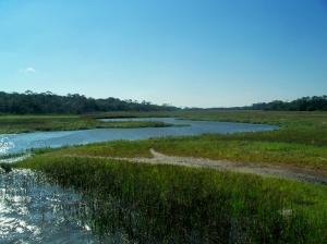 high tide in Clam Creek marsh, JI, 23 April 2012