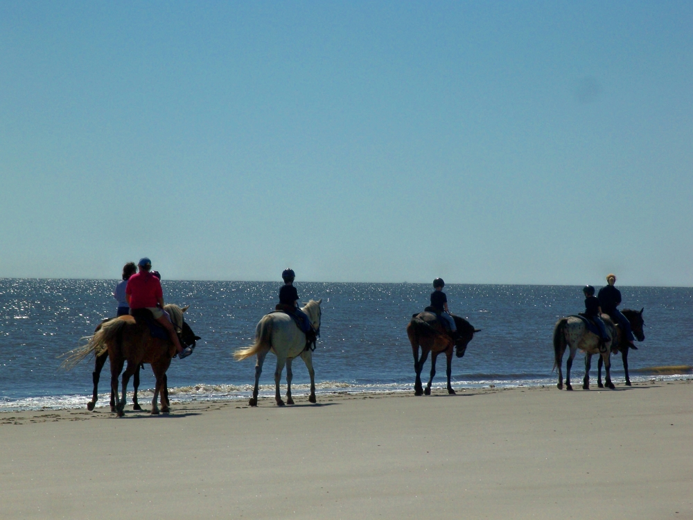 horseriders on Driftwood Beach, JI, 27 April 2012
