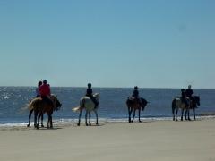 horseriders on Driftwood Beach, JI, 27 April 2012