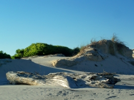 south dunes, JI, 25 April 2012