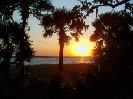 sunset and palms, JI, 23 April 2012