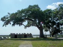 Fort Frederica battlement, SSI, 23 April 2012