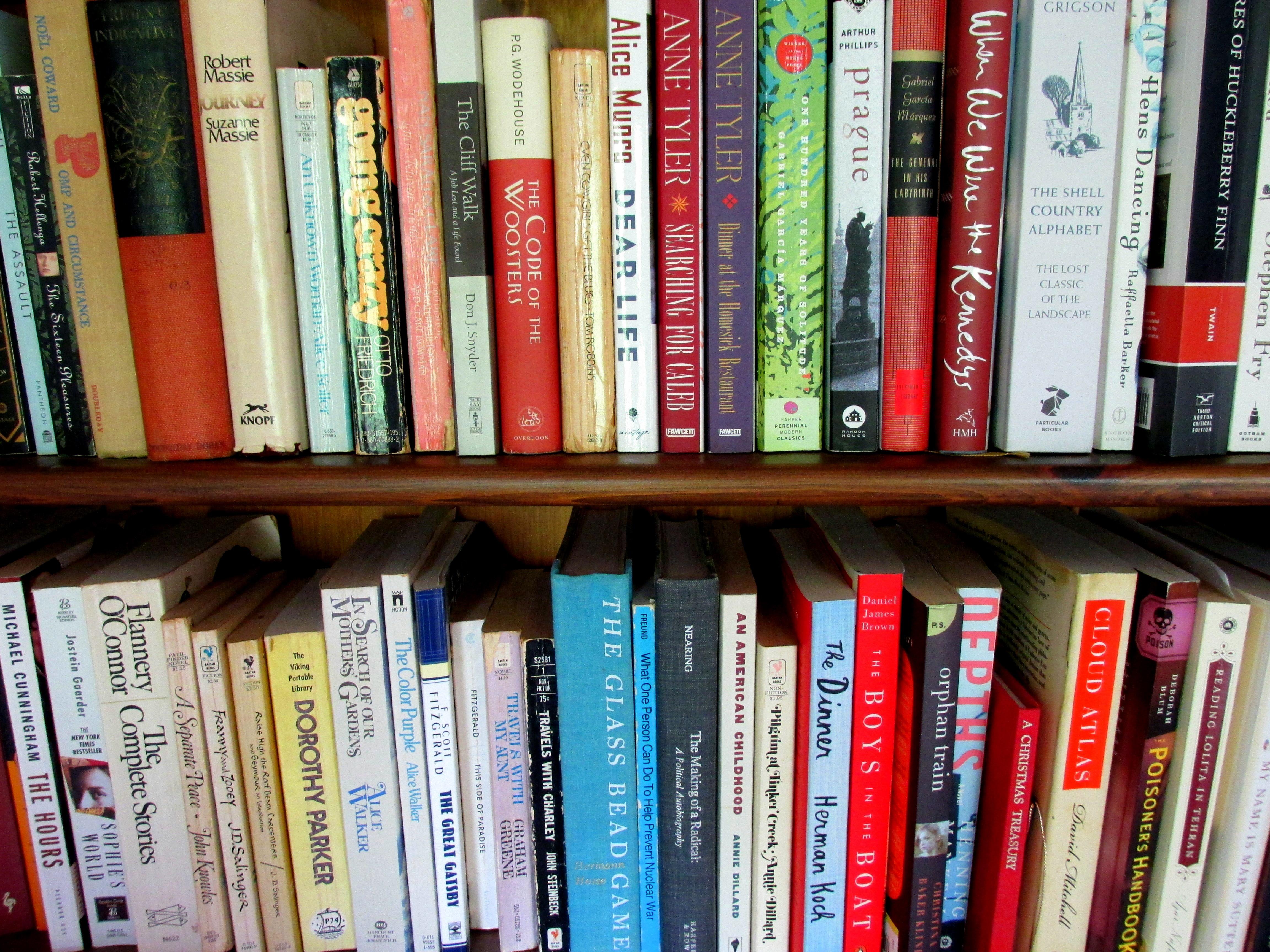bookshelf1July2017.JPG